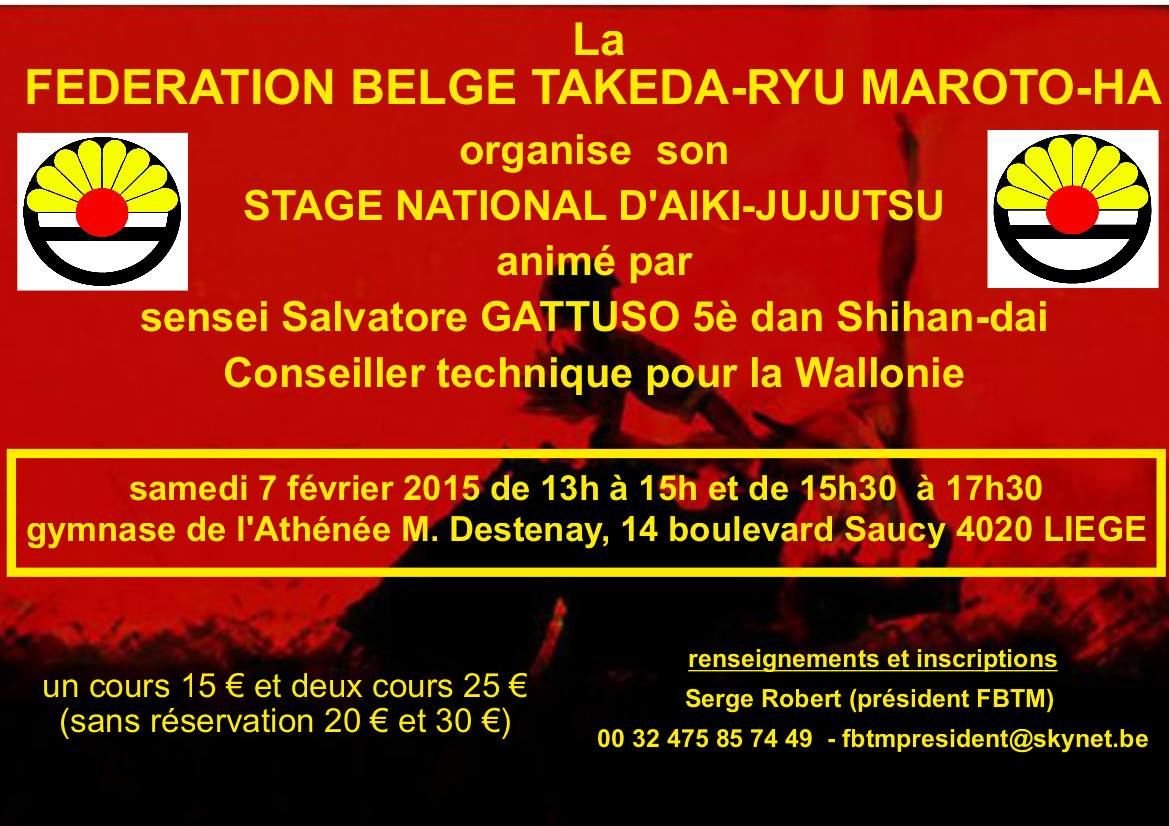Affiche annonce stage national 7 février 2015